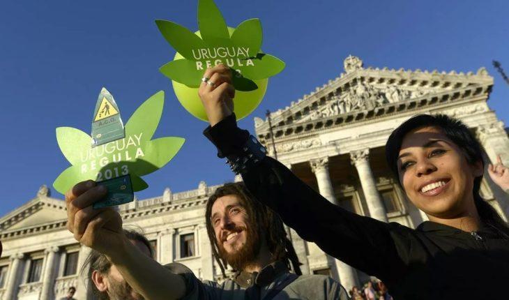 Legalizatsiya Marihuany 1 (№9) — 2021 Фигура, Стрижка, Папарацци — Социум