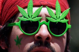 Legalizatsiya Marihuany - Социум