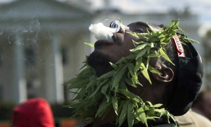 Legalizatsiya Marihuany 4 (№6) — 2021 Фигура, Стрижка, Папарацци — Социум